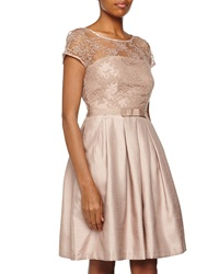 Taylor Lace And Shantung Fit And Flare Dress Mocha
