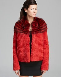 Maximilian Beaver Jacket With Fox Trim Red