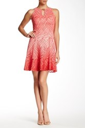 Maggy London Ombre Palm Lace Flare Dress Pink