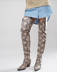 Daisy Street Snake Print Heeled Over The Knee Boots Natural Snake Multi