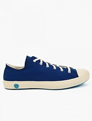 Shoes Like Pottery Indigo Low Top Sneakers