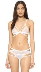 Honeydew Intimates Lucy Lace Bralette White