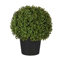 Sia Potted Topiary Boxwood Shrub Small