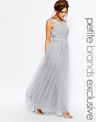 Little Mistress Petite Tulle Maxi Prom Dress With Embellished Sheer Detail Grey