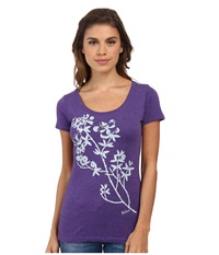 Woolrich Scenic Overlook Tee Purple Rush Women's T Shirt Multi