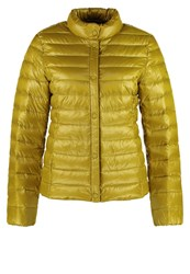 Esprit Edc By Down Jacket Brass Yellow