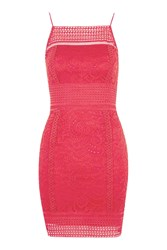 Topshop Floral Crochet Bodycon Dress Coral