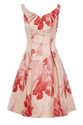 Coast Donna Crepe Dress Pink