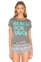 Chaser Beach Por Favor Tee Grey