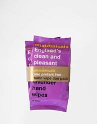 Anatomicals England's Clean And Pleasant Hand Hand Wipes 2 X 15 Packs Clear