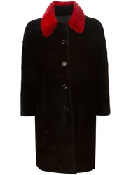 Liska Contrasting Collar Fur Coat Black