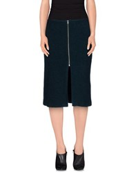 Rika Skirts Knee Length Skirts Women