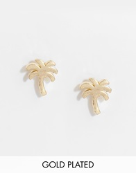 Stella And Bow Bahamaas Tropical Palm Tree Earrings Gold