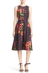 Ted Baker Women's London 'Anaa Juxtapose Rose' Sleeveless Fit And Flare Midi Dress