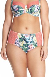 Panache Plus Size Women's 'Chi Chi' High Waist Briefs