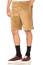 Palm Angels Corduroy Work Shorts Tan