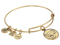 Alex And Ani The Elephant Charm Bangle Rafaelian Gold Finish Bracelet