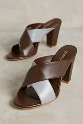 Anthropologie Miss Albright Casey Mules Choolate Grey