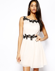 Little Mistress Prom Dress In Flower Applique Creamblack