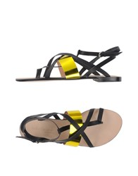 Peter Flowers Footwear Thong Sandals Women Black