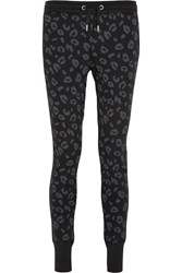 Zoe Karssen Leopard Print Cotton Blend Jersey Track Pants Black