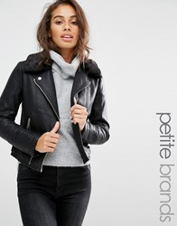 Miss Selfridge Petite Leather Look Jacket Black