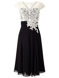 Jacques Vert Lace Bodice Chiffon Dress Multi Black