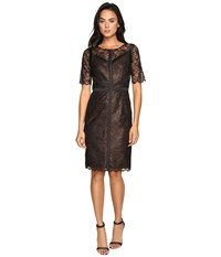 Nue By Shani Lace Dress With Black Piping Detail Copper Women's Dress Bronze