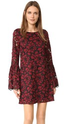Likely Lace Perry Dress Black Garnet