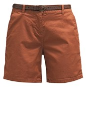 New Look Festival Shorts Tan