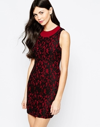 Aryn K Lace Shift Dress Black