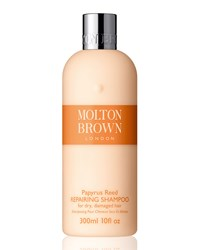 Papyrus Reed Shampoo Molton Brown