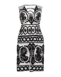 Ktz Dresses Knee Length Dresses Women Ivory