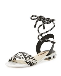 Sophia Webster Nia Woven Ankle Wrap Sandal Black White Black White