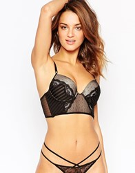 Thistle And Spire Thistle And Spire Mixed Lace Bustier Black