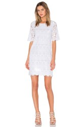 Bcbgeneration Cocktail Lace Dress White