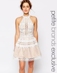 Jarlo Petite High Neck All Over Cutwork Lace Mini Prom Dress White