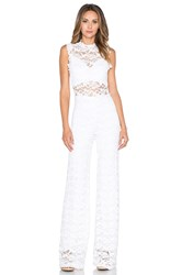 Nightcap Dixie Lace Catsuit White