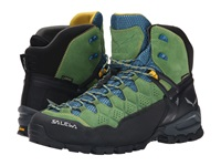 Salewa Alp Trainer Mid Gtx Treetop Ringlo Men's Shoes Green