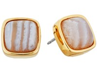 Cole Haan Basic Stud Earrings Gold Blue Lace Agate Earring Multi