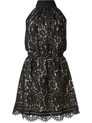 Joie High Neck Lace Dress Black