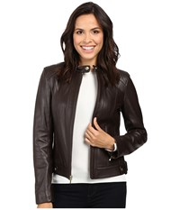 Cole Haan Leather Racer Jacket With Quilted Panels Deep Espresso Women's Jacket Brown
