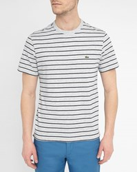 Mottled Grey Lacoste Logo Round Neck T Shirt With Blue And White Stripes