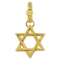 Torrini Stella Di David Medium 18K Yellow Gold Pendant