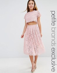 True Decadence Petite 2 In 1 Allover Lace Full Prom Skater Dress Blush Pink