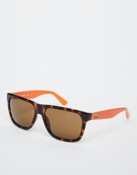 Lacoste Wayfarer Sunglasses Brown