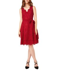 Phase Eight Milly A Line Lace Dress Red