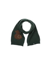 Duck Farm Accessories Oblong Scarves Women Dark Green