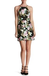 Dress The Population Women's 'Lucy' Embroidered Fit And Flare