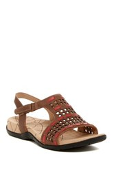 Sanita Catalina Caprice Cutout Sandal Brown